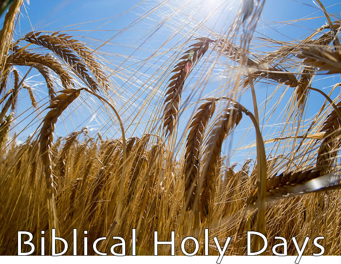 Yahweh's Assembly in Yahshua - Biblical Holy Days